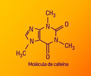 Molécula de Cafeína | Energiton